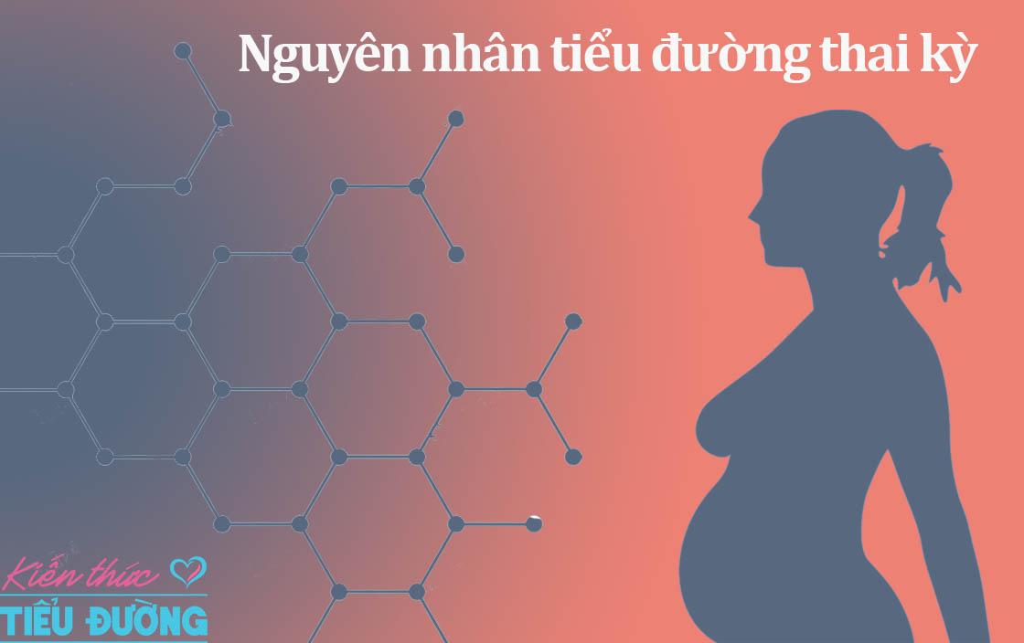 Nguyên nhân tiểu đường thai kỳ 7