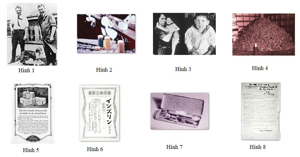 Tìm hiểu về insulin 5