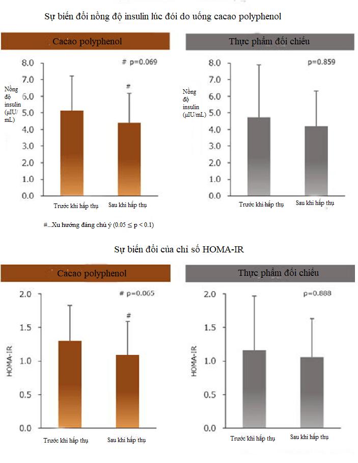 Socola (Chocolate) cải thiện bệnh tiểu đường ở phụ nữ mãn kinh? Cải thiện tình trạng kháng insulin