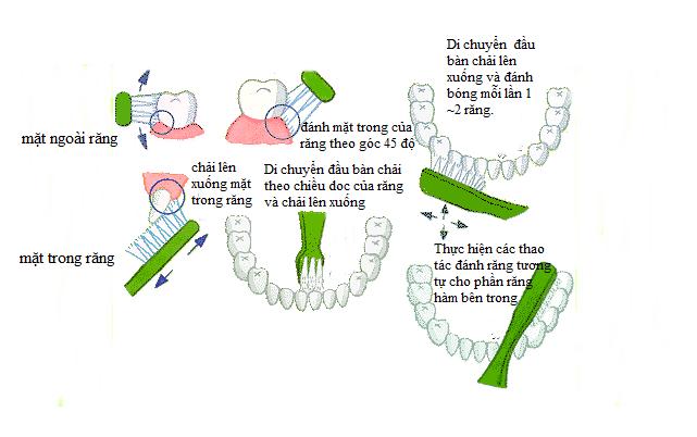 Bệnh tiểu đường và sức khỏe răng miệng 7