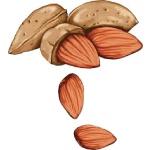 Chế độ ăn uống bổ sung canxi đúng cách giúp xương chắc khỏe 11