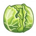 Chế độ ăn uống bổ sung canxi đúng cách giúp xương chắc khỏe 2