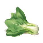Chế độ ăn uống bổ sung canxi đúng cách giúp xương chắc khỏe 4