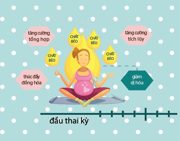 Đặc trưng cơ bản của chuyển hóa glucose tác động đến cân nặng của mẹ và bé 3